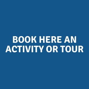 Book HERE AN Activity or Tour in giethoorn